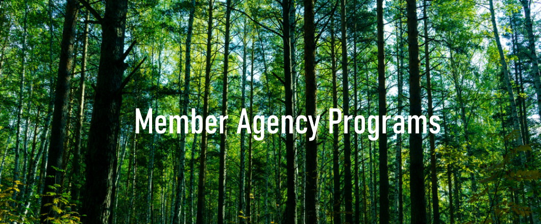 agency grants forest