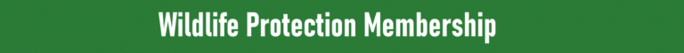 agency membership widget